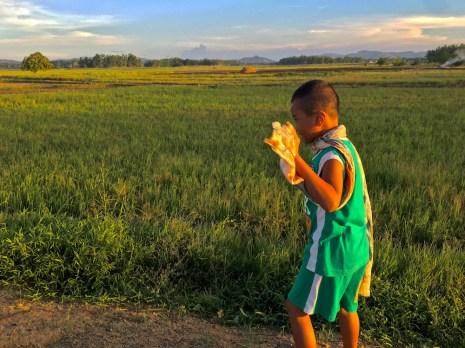 Jerry wanders the roadside near Balasan, Philippines