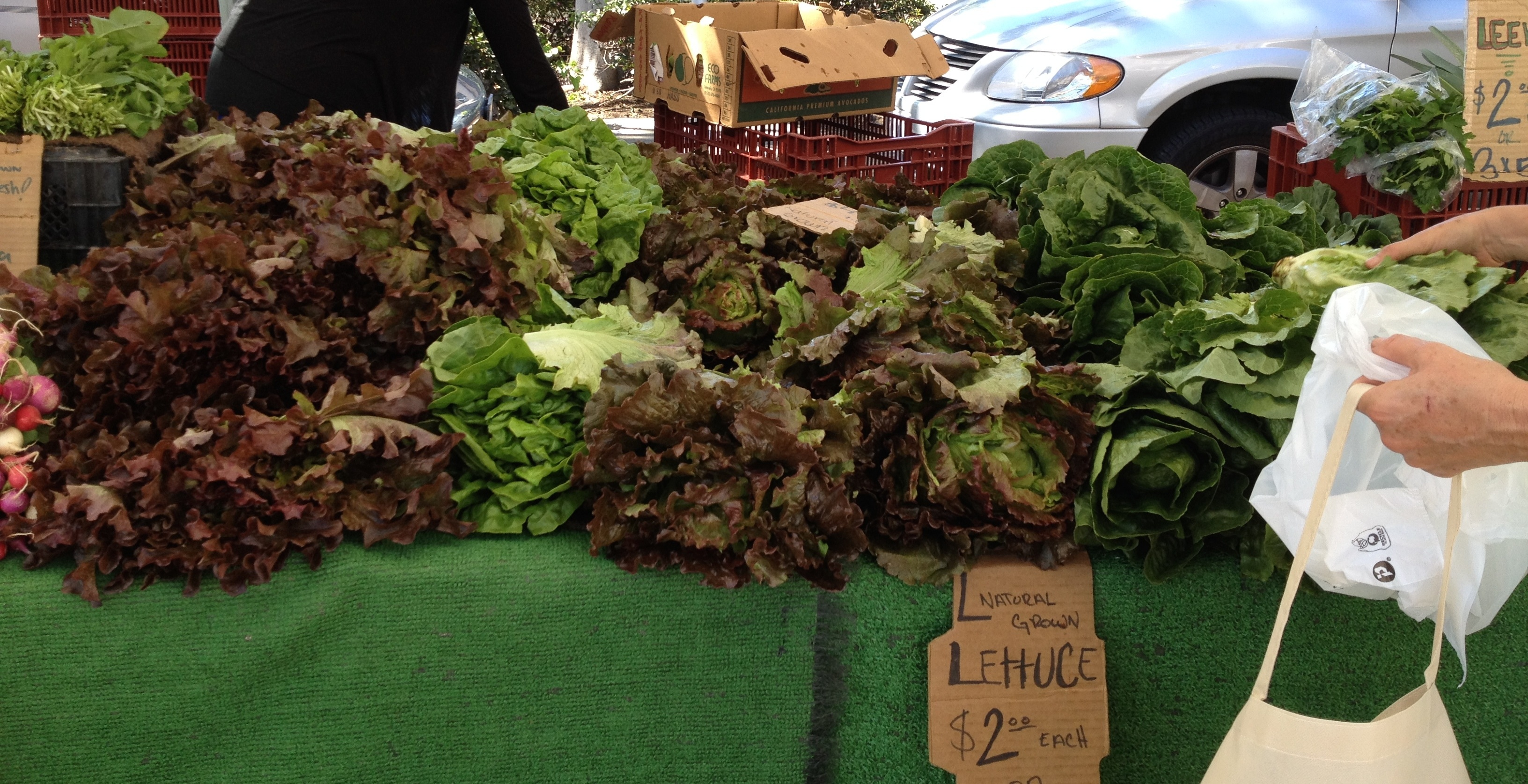 California lettuces at a farmers market