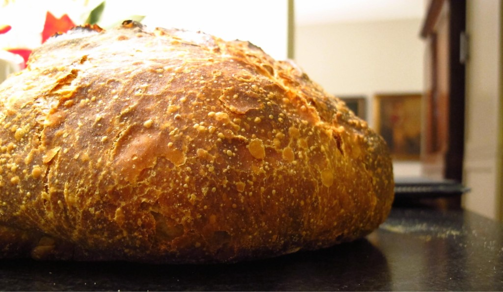 Sourdough bread with an amazing crust.