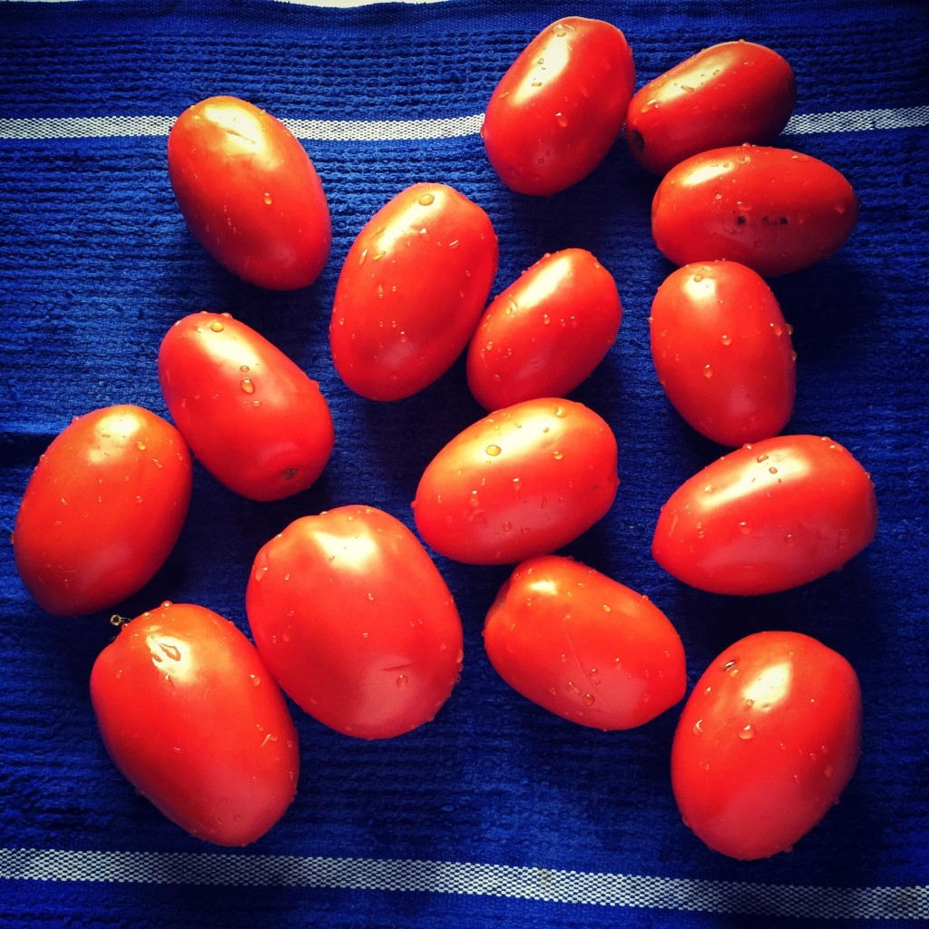 Tomatoes on a blue and white towel.