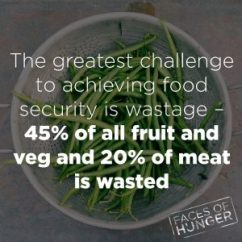 Food Security Waste Fact