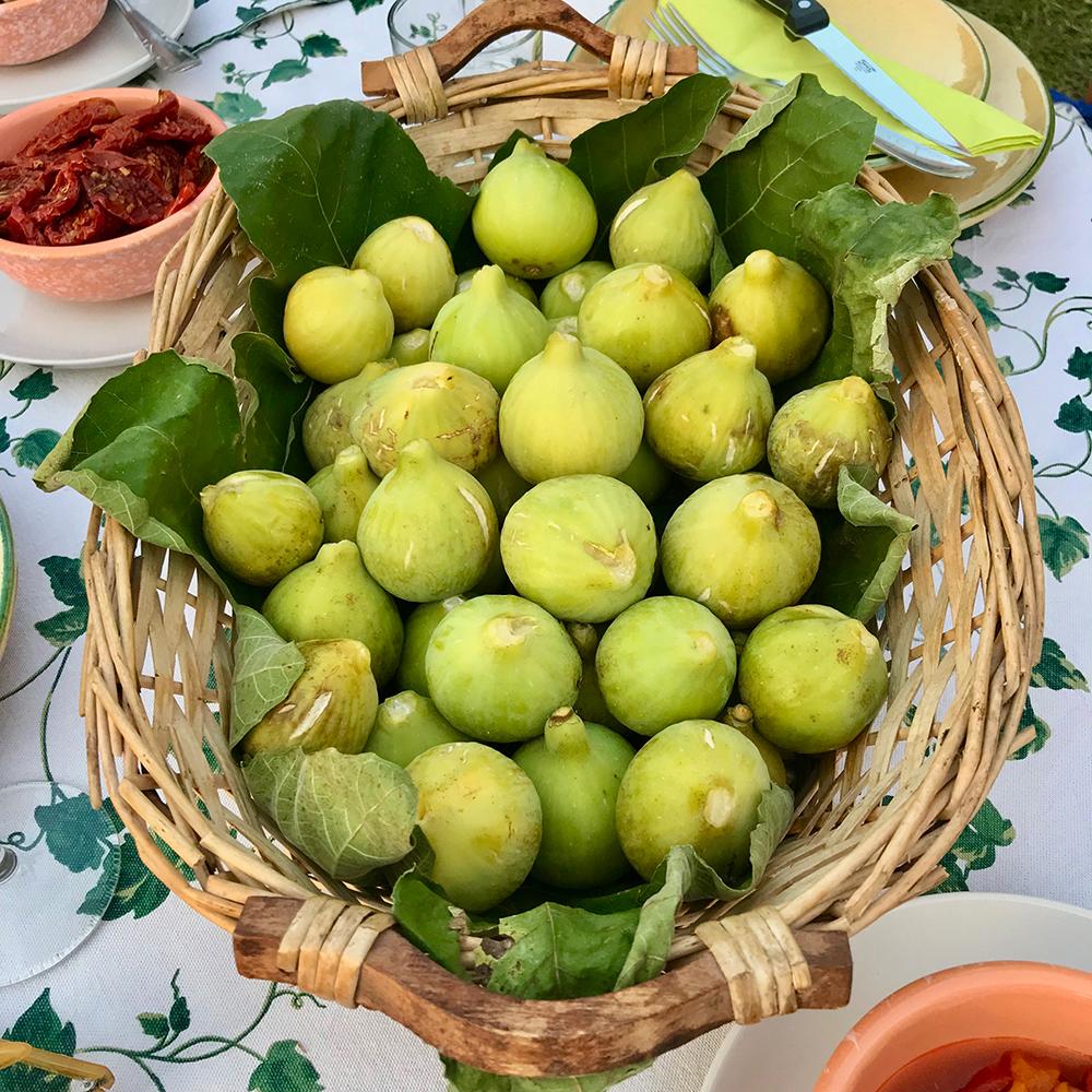 Marzia's figs.