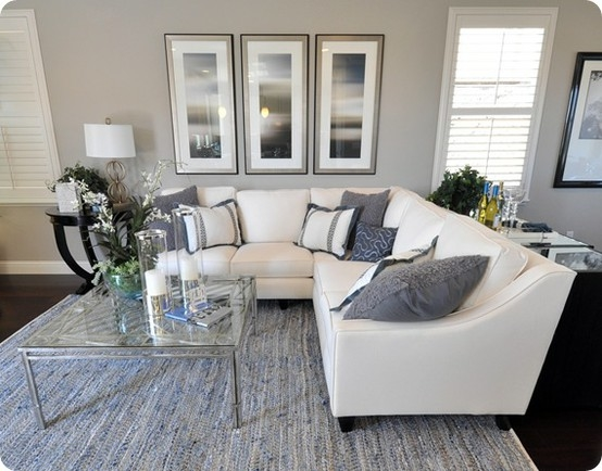Gray & White Living Room Pictures, Photos, And Images For