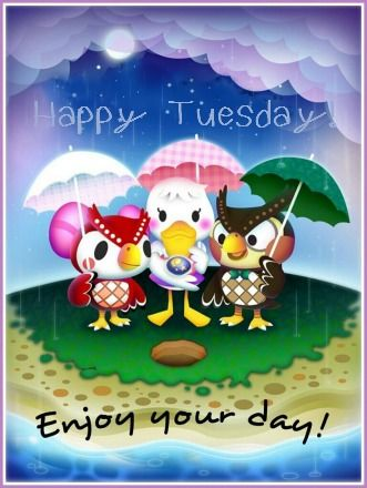Rainy Tuesday : rainy, tuesday, Happy, Rainy, Tuesday, Pictures,, Photos,, Images, Facebook,, Tumblr,, Pinterest,, Twitter