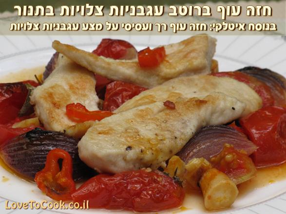 חזה עוף ברוטב עגבניות
