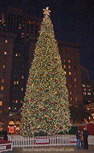 Christmas Tree Lighting - Union Square, San Francisco