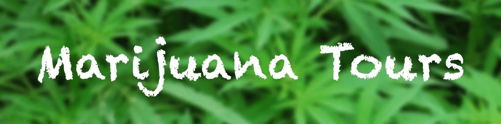 San Francisco Marijuana Tours