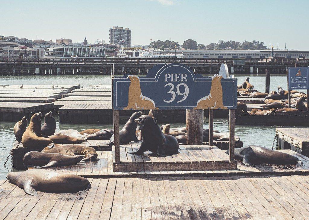port, pier, usa
