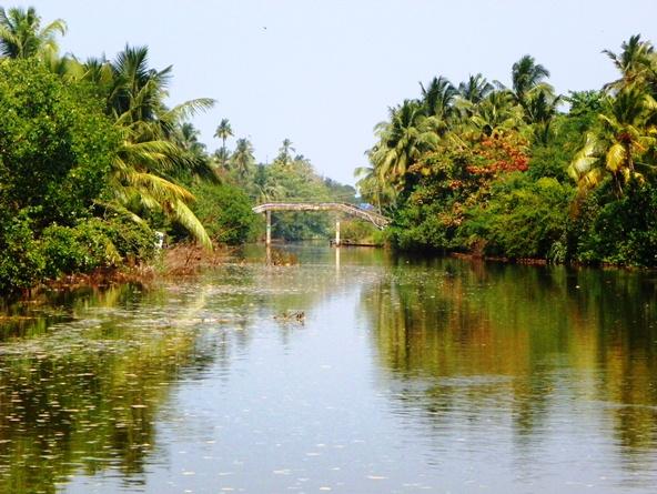 Южная Индия. Заводи Кералы