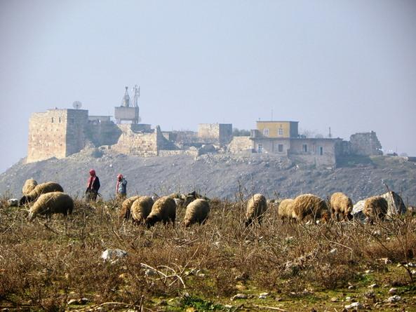 крепость Калаат-аль-Мудик