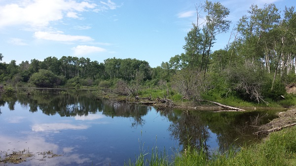 Turtle Mountain Provincial Park (19)