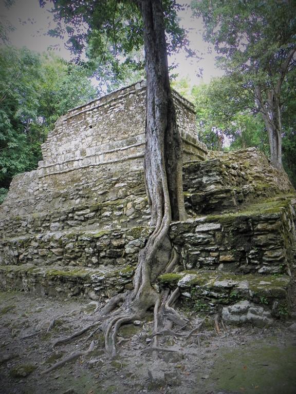 Muyil. Mexico