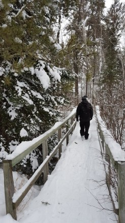 Pine Point Self-guiding trail