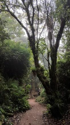 Трейл к вулкану Ботос