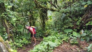 Cerro Chato Trail (17)