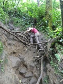 Cerro Chato Trail (2)