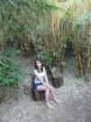 Monteverde Inn. Park (8)