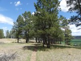 Devils Tower National Monument (18)