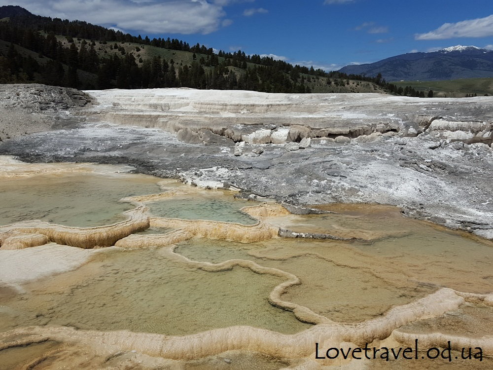 mammoth-hot-springs-22