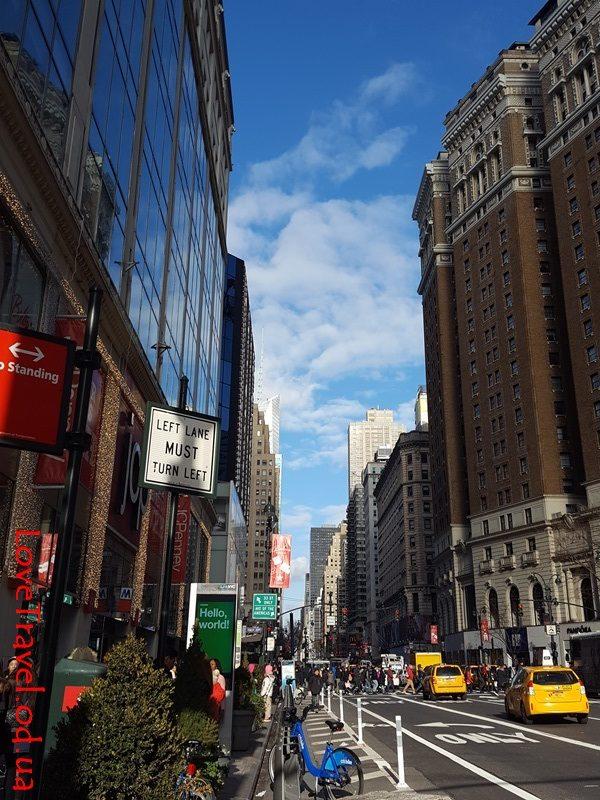 New York (8)
