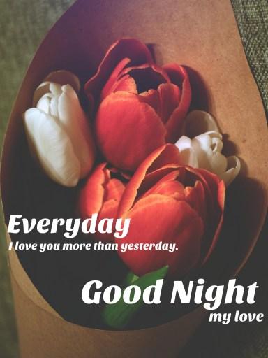 good-night-love-image-257-3