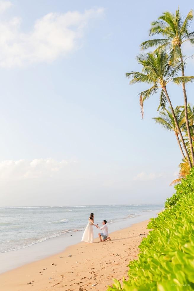 Maui-Proposal-Photographers_0037.jpg