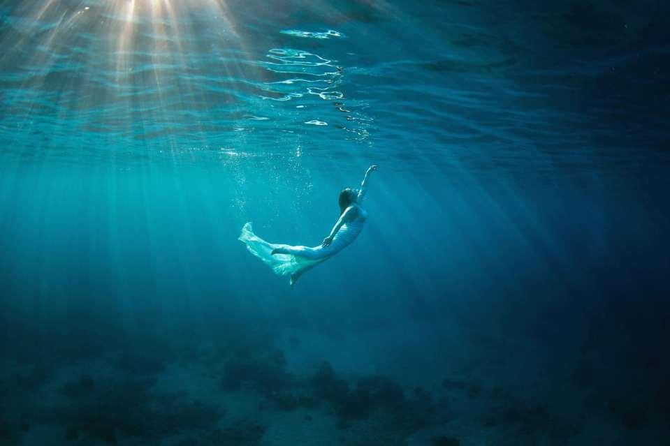 Maui-Underwater-Photographers_0069.jpg