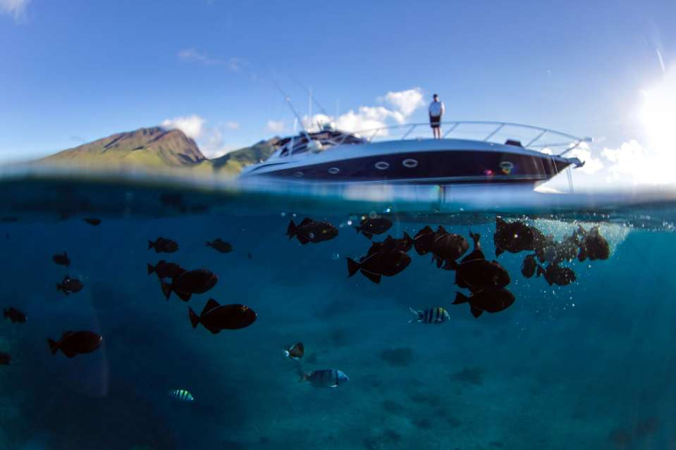 Maui-Underwater-Photographers_0082.jpg