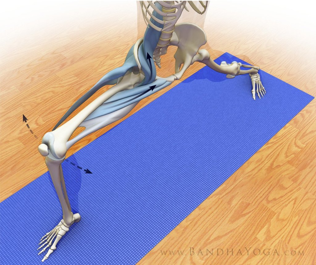 Figure 3: Co-activating the hip adductors, abductors and rotators in Warrior  II.