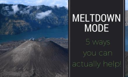 Meltdown Mode: 5 Ways You Can Actually Help
