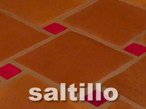 saltillo cleaning and sealing salt
