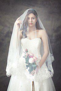 wedding veil and hair accessories