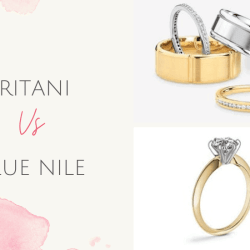 ritani vs blue nile