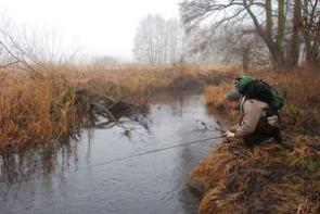 Осенняя плотва на реке