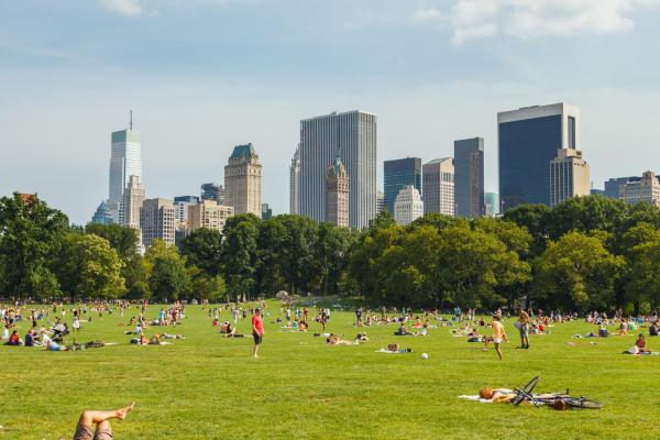 Sheep Meadow Central Park NYC