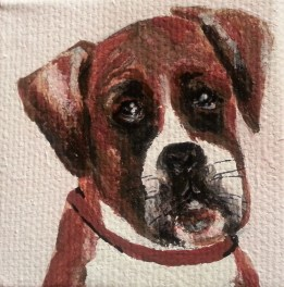 Pet portrait, acrylic, S. Macera, Lovingcolor.net