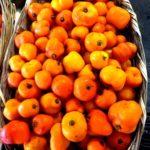Manzana chili