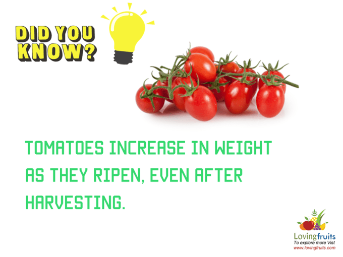 calories in cherry tomatoes