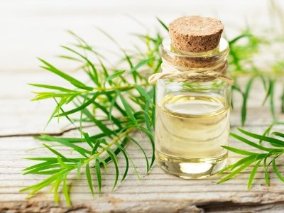 Bets Oils For Natural Hair Growth - Tea Tree Oil