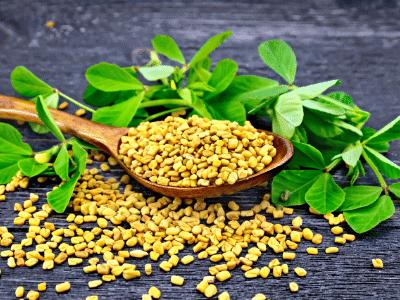 Best herbs for hair growth - Fenugreek