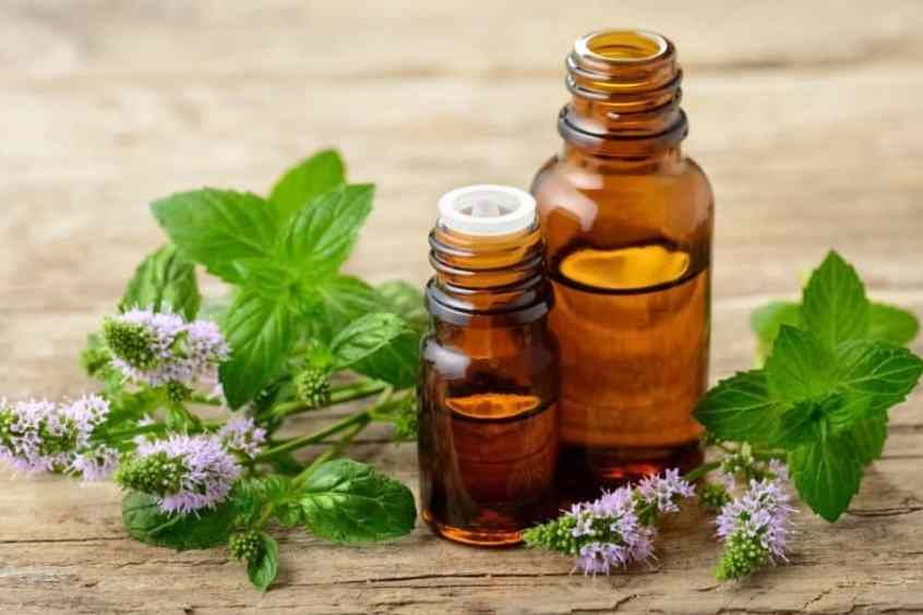 Benefits of Peppermint Oil on Natural Hair