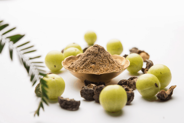 benefits of amla on hair