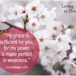 """My grace is sufficient for you, for my power is made perfect in weakness."""" - 2 Corinthians 12:9"""