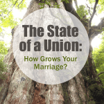 How grows your marriage? The State of a Union