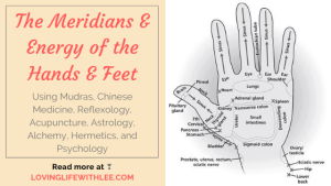 The Meridians & Energy of the Hands & Feet
