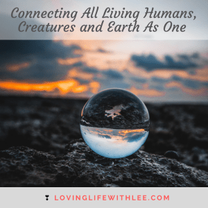 Connecting All Life of Humans, Creatures and Earth As One Field
