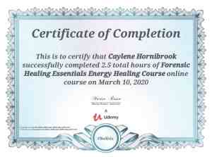 Energy Essentials Forensic Healing Course