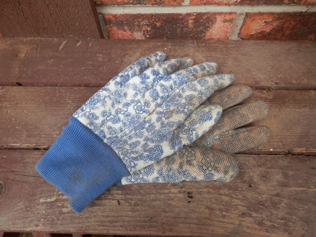 Old Garden Gloves