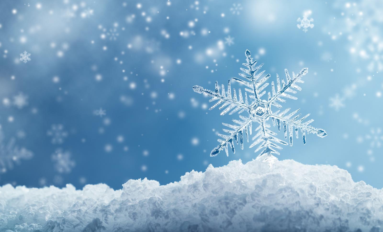 Real Snowflakes Falling Wallpaper 2018 Musical Frozen Broadway Em Nova York Imgressos Em