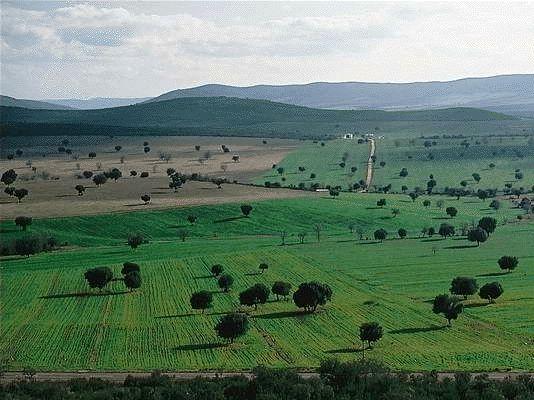 Cabañeros National Park Spain
